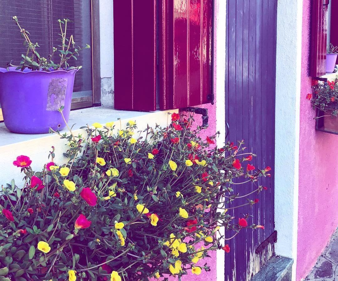 Traumhaft schöne Farbe Buranos